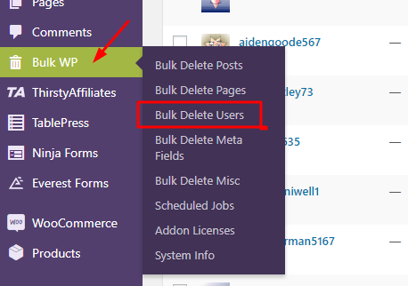 Bulk Delete Users using Bulk Delete Plugin - Deleting Specific user role in Bulk