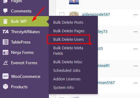 Bulk Delete Users using Bulk Delete Plugin - Deleting Specific user role in Bulk