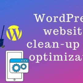Optimize and Clean-up a WordPress website