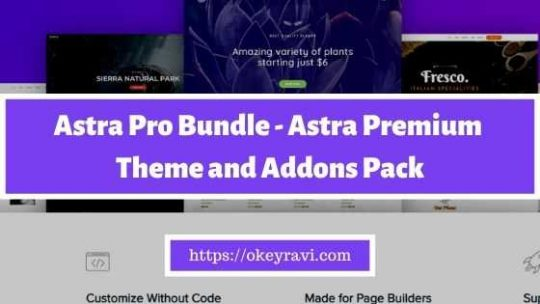 Astra Pro Bundle - Premium Theme and Addon